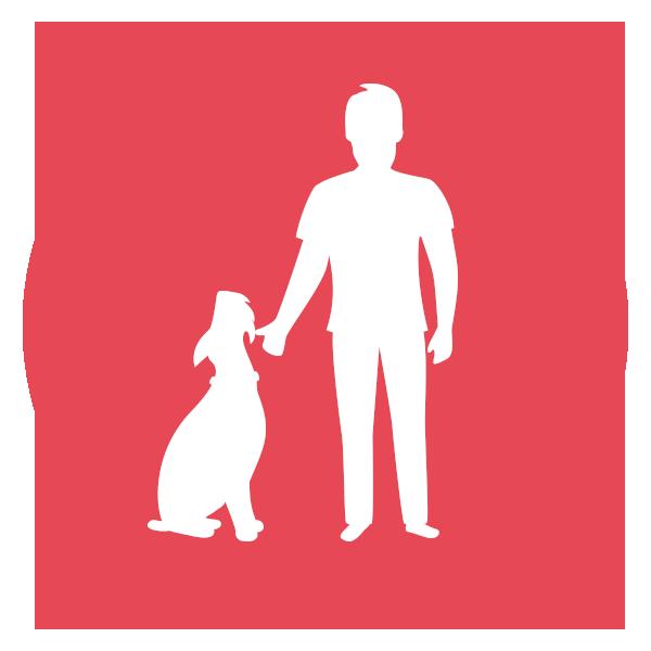 educazione-addestramento-cane