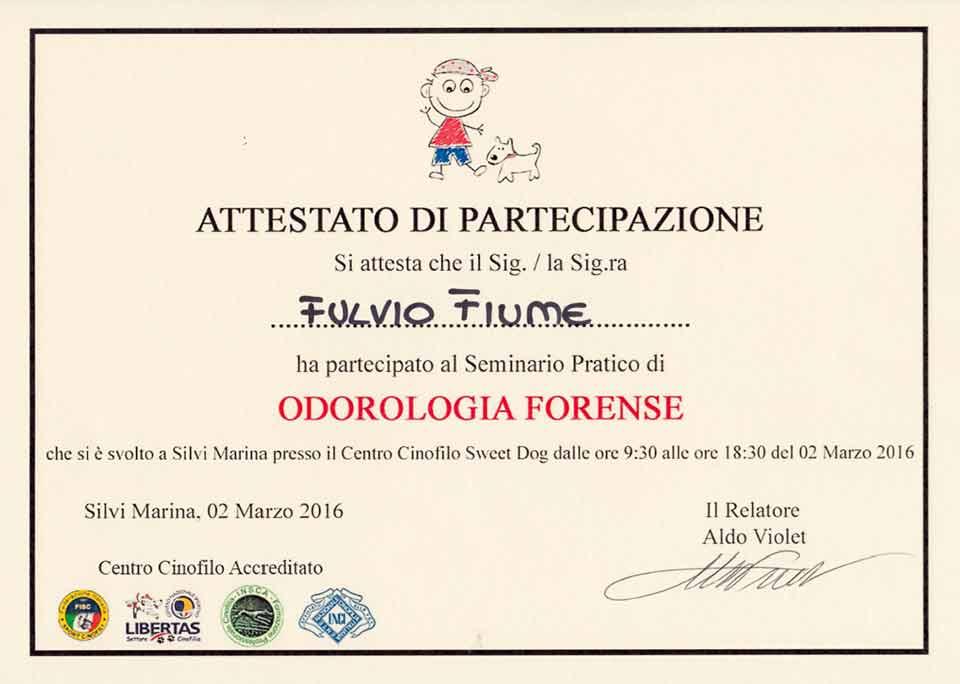 """Attestato partecipazione Fulvio Fiume, seminario pratico di """"Odorologia Forense"""", Relatore Aldo Violet, Marzo 2016"""