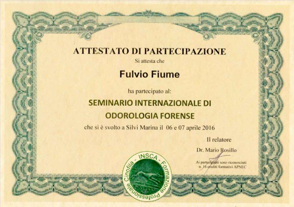 """Attestato partecipazione Fulvio Fiume """"Seminario internazionale di odorologia forense"""" relatore Dr. Mario Rosillo"""